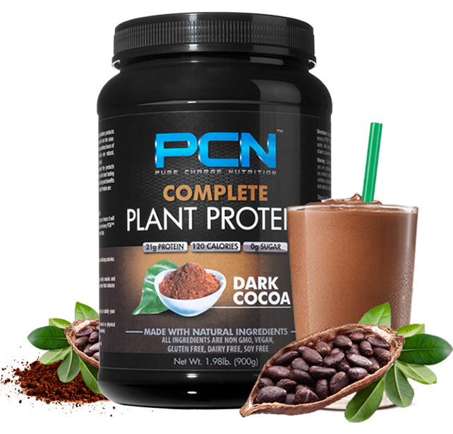 Dark cocoa protein powder